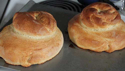 Baked Cottage Loaves